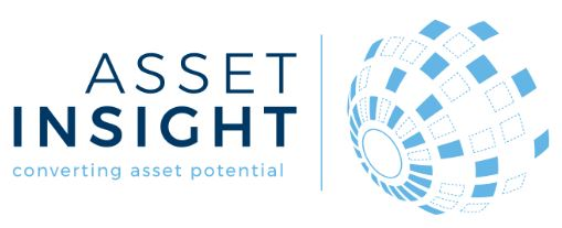 Logo Asset Insight